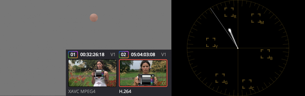 How to match cameras in post