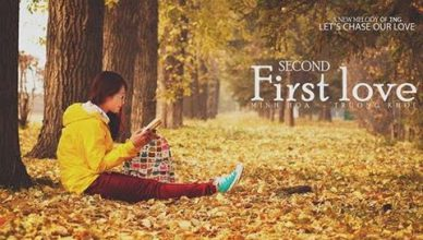 The Second First Love poster image